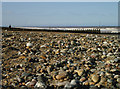TA2147 : Pebbled Beach by Andy Beecroft