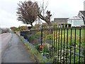 NZ1761 : Gardens along Scotland Head, Winlaton by Christine Johnstone