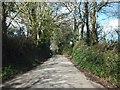 SX4170 : Minor road to Todsworthy Farm by David Smith