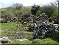 SX2670 : Ruins at Pontons Piece, Grasmere Lane by Rob Farrow