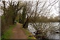 SU0194 : Path around Neigh Bridge Lake by Steve Daniels