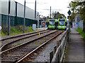 TQ2967 : Sutton (northern fringe):  Beddington Lane tram stop by Dr Neil Clifton