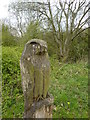 SJ9380 : Carved bird of prey by Peter Barr