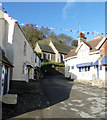 SX4350 : Cawsand - The Square by Rob Farrow