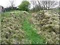 SE0022 : Sunken path near Littlewood, Mytholmroyd by Humphrey Bolton