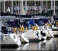 J5082 : Yachts, Bangor Marina : Week 18
