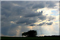 SK1561 : Bush, clouds and sun beams by David Lally