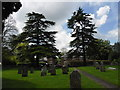 SU2423 : All Saints, Whiteparish: churchyard (N) by Basher Eyre