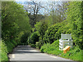 SU0163 : 2012 : Consciences Lane, the steep bit by Maurice Pullin