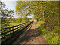 SD6601 : Long Causeway, Leigh by David Dixon