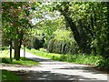 SJ7274 : The point at which Back Lane narrows by Christine Johnstone