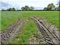 SJ7273 : Tyre tracks in a field entrance by Christine Johnstone