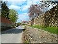 SU4092 : Raised Walk, Church St, West Hanney by Des Blenkinsopp