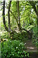 SK2958 : Path to the Heights of Jacob, Matlock Bath by Neil Theasby