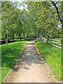 SP1854 : Jubilee Walk to Anne Hathaway's Cottage by David P Howard