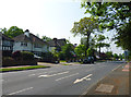 TQ3967 : Bromley:  Barnfield Wood Road by Dr Neil Clifton