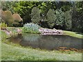 TQ9457 : Pond in Doddington Place Gardens by Paul Gillett