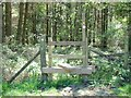 SK0445 : Stile on the path into Key Wood by Ian Calderwood