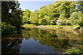 SJ8382 : Mill pond at Quarry Bank Mill by Graham Hogg