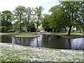 SK0573 : Pond, Buxton by Kenneth  Allen