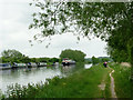 SO7204 : Gloucester and Sharpness Canal near Slimbridge by Roger  Kidd