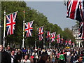 TQ2980 : Flag Day on The Mall by Colin Smith