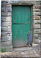 SK0582 : Chinley - door and dog at Hull End by Dave Bevis