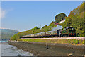 SX8852 : Steam Train approaching Kingswear : Week 23