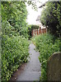 SE1226 : Footpath - Northedge Park by Betty Longbottom