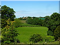 TR0660 : View of Hernhill from Mount Ephraim gardens, Staplestreet by pam fray