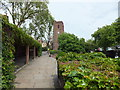 TQ2777 : Ropers Garden and Chelsea Old Church by PAUL FARMER