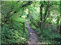 SP1451 : Avon Valley Footpath by David P Howard
