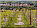 "SJ9699 : ""Flaggy Fields"" - The Path Between Ridge Hill and Heyrod by David Dixon"