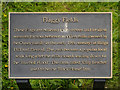 SJ9699 : Flaggy Fields Information Plaque by David Dixon