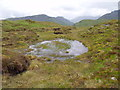 NN4312 : Peaty pool north of Cruinn Bheinn above Loch Katrine by ian shiell