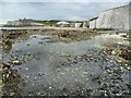 TR3970 : Kingsgate Bay from White Ness : Week 25