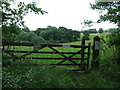 TL8735 : Five Bar Gate by Keith Evans