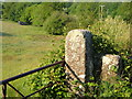 SX6886 : Gateposts near Thorn by Derek Harper