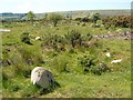 SX6689 : Moorland near Moortown by Derek Harper
