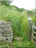 SE0023 : The western end of Hebden Royd FP88 at Upper Lumb by Humphrey Bolton
