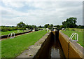 SJ8255 : Paired locks No 46 near Church Lawton, Cheshire by Roger  Kidd