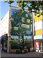 TQ4069 : Charles Darwin mural, central Bromley by Christopher Hilton