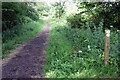 SP7239 : Bridleway in Leckhampstead Wood by Philip Jeffrey
