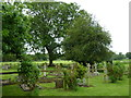 SU2946 : St Nicholas, Fyfield- June 2012 (D) by Basher Eyre