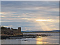 NO5116 : St Andrews Castle : Week 27