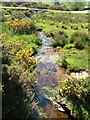 SX6474 : Stream near Dunnabridge Pound Farm by Derek Harper