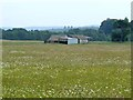 NY7686 : Meadow and  barns at Thorneyburn by Oliver Dixon