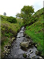 SK0173 : River Goyt by Gareth Jones