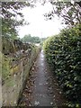 SE2025 : Footpath - Listing Lane by Betty Longbottom