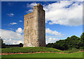R8201 : Castles of Munster: Cloghleagh, Cork by Mike Searle